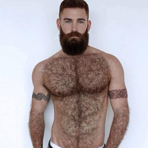 oso gay por