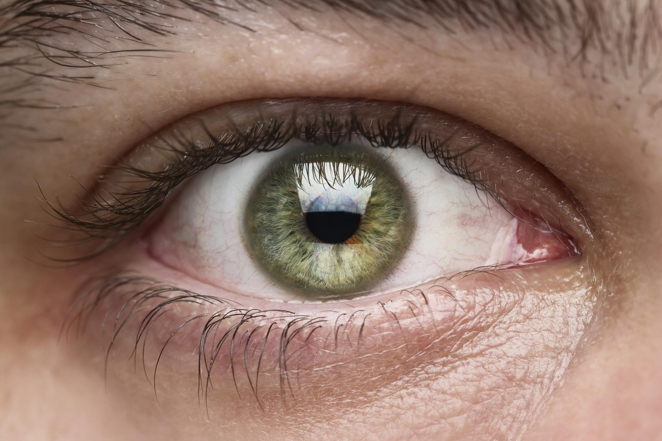 Por qu escuece el semen en los ojos shangayshangay - Colores verdes azulados ...