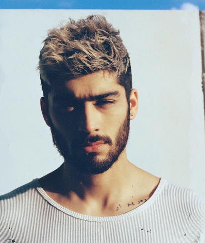 Zayn Malik y los rumores gays de One Direction