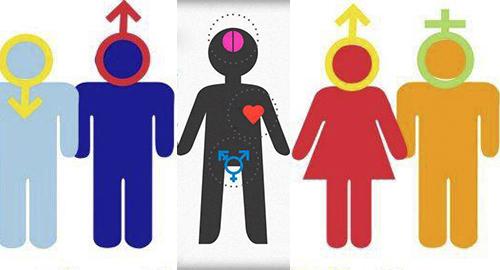 Qué Es Ser Cisexual O Cisgénero Shangayshangay